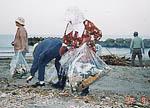 中国大洪水によるゴミ漂着災害(鹿児島県)のサムネイル画像