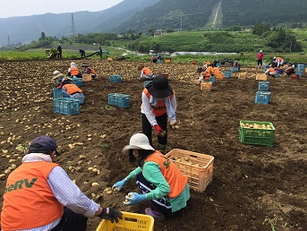 平成28年熊本地震 SeRV久留米が農業ボランティアに参加のサムネイル画像