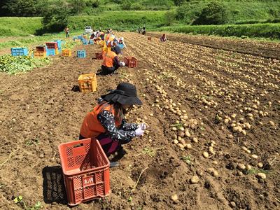 平成28年熊本地震 SeRV福岡からの支援のサムネイル画像